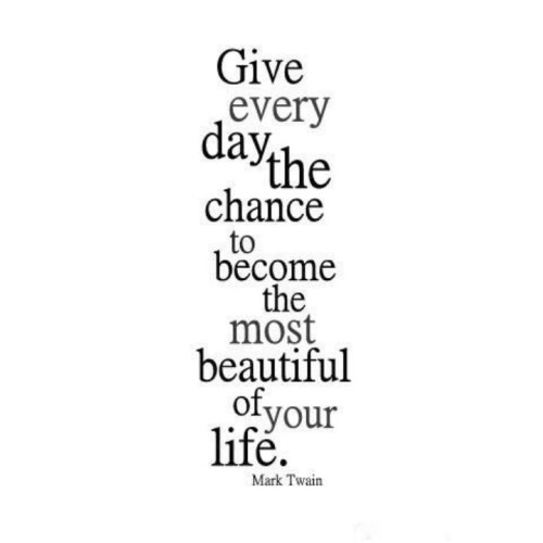 """Fantaboy Mark Twain's Inspirational Quote Poster (12""""x""""18)"""