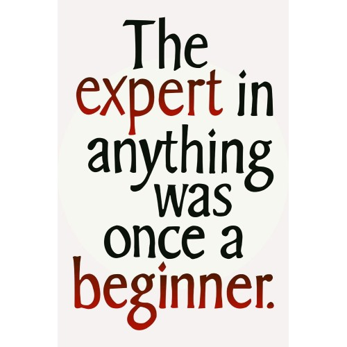 """Fantaboy Motivational  Beginners for Quote Poster (12""""x""""18)"""