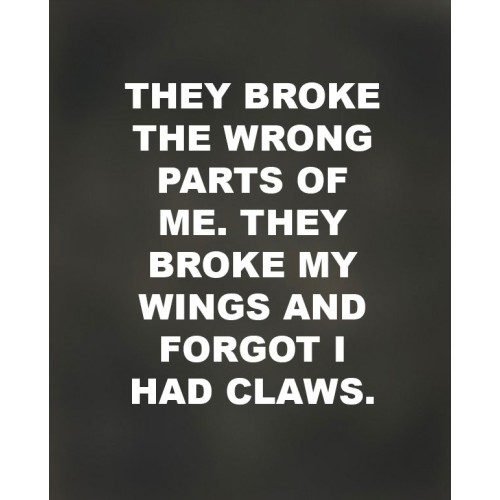 "Fantaboy They Broke my Wings… motivational Poster (12""x""18)"