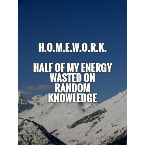 "Fantaboy Funny Homework Quote Poster (12""x""18)"