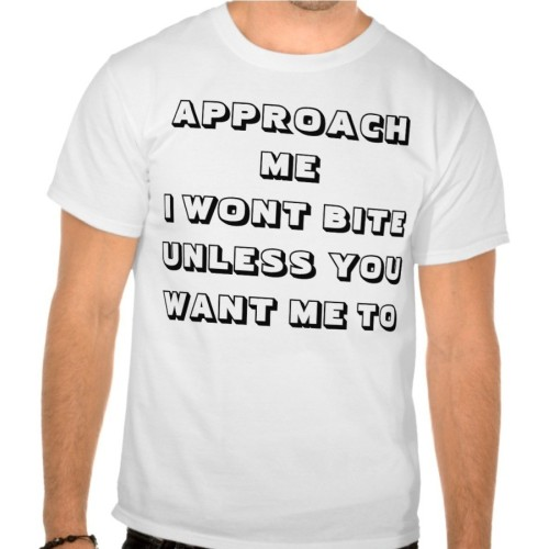 Fantaboy Approach... Printed T-Shirt
