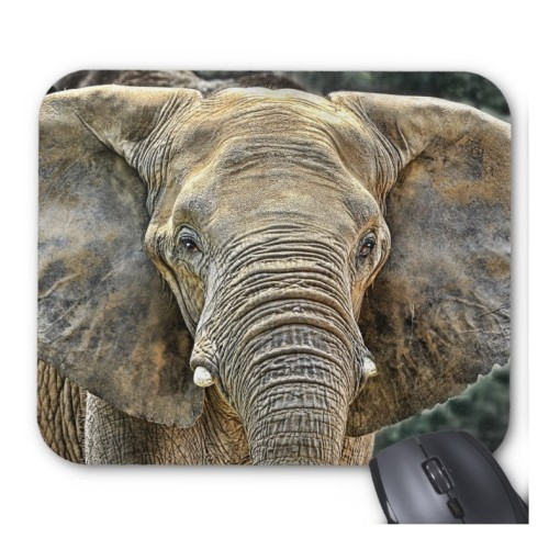 Fantaboy Elephant African All Ears Mouse Pad
