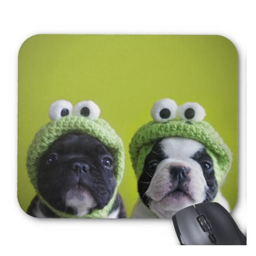 Fantaboy French Bulldog Puppies With Frog Caps Mouse Pad