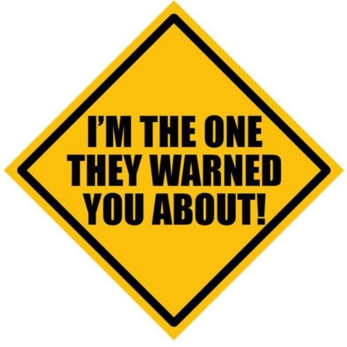 Fantaboy I Am The One They Warned You About ! Sides Car Sticker