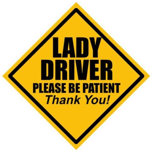 Fantaboy Lady Drivers Please Be Patient! Sides Car Sticker