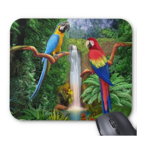 Fantaboy Macaw Tropical Parrots Mouse Pad