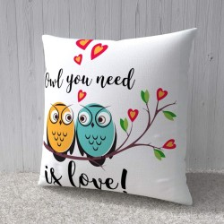 "FantaBoy Valentine Day Special Combo Offer ""You Need Is Love"" Owl Printed Ceramic Coffee Mug With Cushion Cover For Your Girlfriend,Boyfriend,Husband,Wife Or Your Loved Ones"